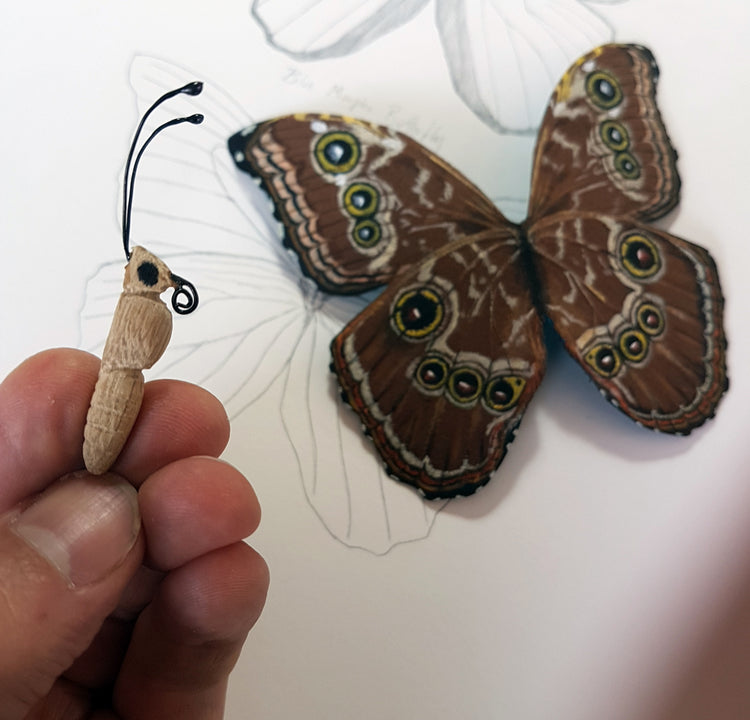 Taxidermy Paper Butterflies for Two