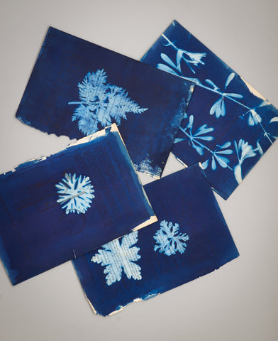 Easy gifts to make at home: cyanotype