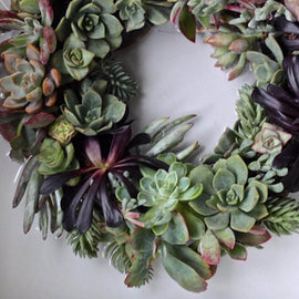 At Home: Succulent Wreath Workshop - SOLD OUT