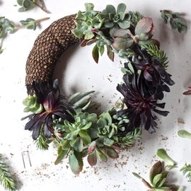 At Home: Succulent Wreath Workshop