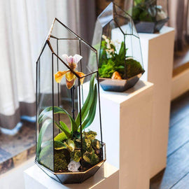 Terrarium Design School for Two