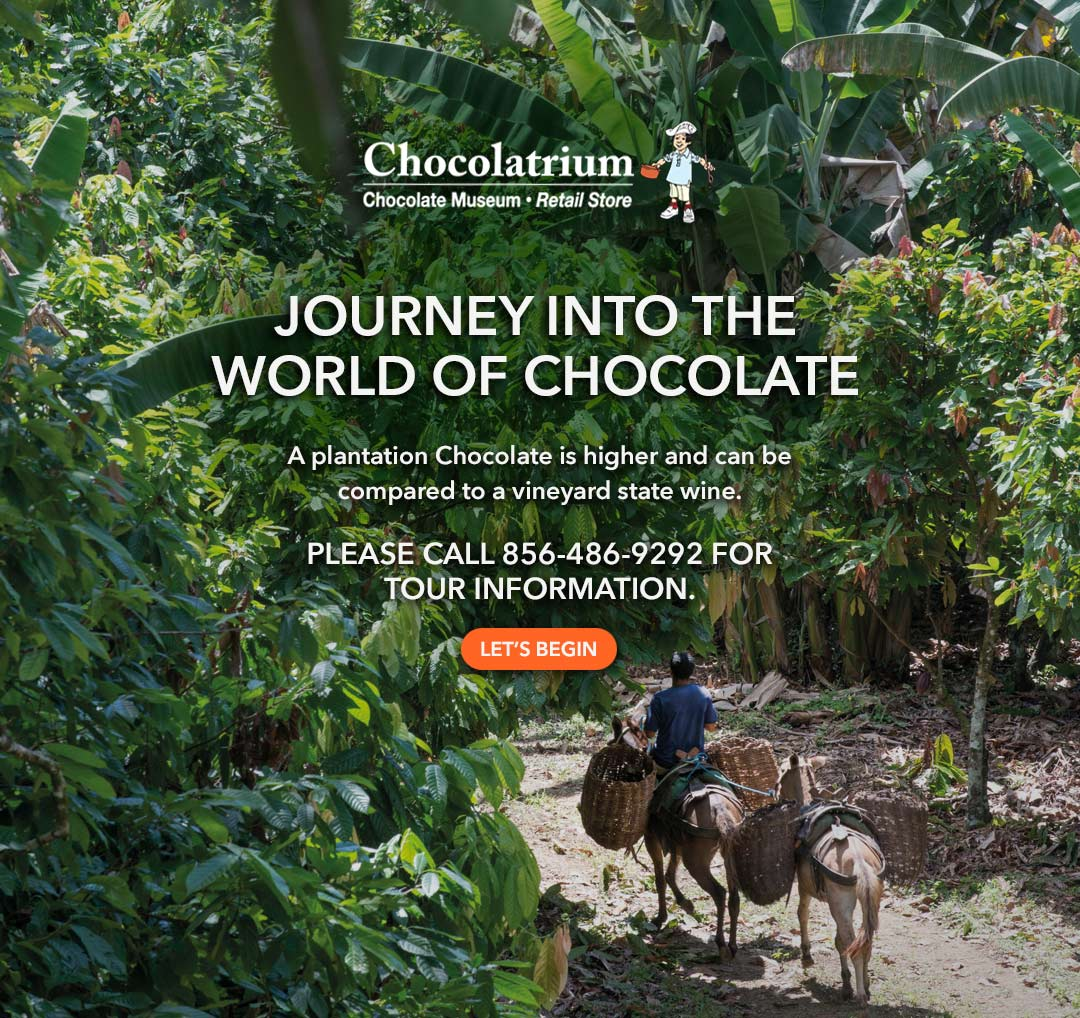 Chocolate Museum Tours by Cluizel