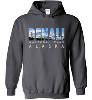 Graphics Inspire - DENALI National Park Alaska Mountain Range Charcoal Gray Hoodie