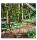 Graphics Inspire Canvas - John Muir Every Walk w/Nature Quote on Painterly Floral Mountain Trail Canvas Wrap