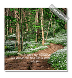 John Muir Every Walk w/Nature Quote on Painterly Floral Mountain Trail Canvas Wrap