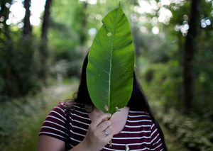 What is greenwashing, and how can I avoid it?