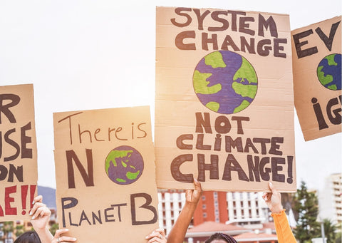 Cardboard posters at a climate change protest which say 'there is no planet b' 'system change not climate change'