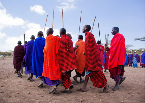 A group of Maasai wearing red, blue and purple cloaks gather