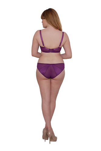 Curvy Kate Scantilly Peek-A-Boo Brief Violet