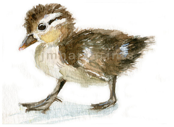 Watercolor  Baby Duck, Baby Duck Print