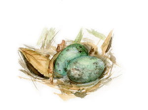 Watercolor Bird Nest, Bird Nest Print