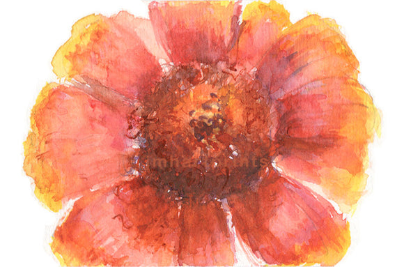 Watercolor Beach Daisy, Beach Daisy Print