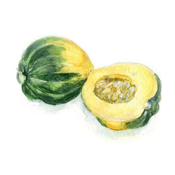 Watercolor Acorn Squash, Acorn Squash Print, Squash Print, Vegetable Print