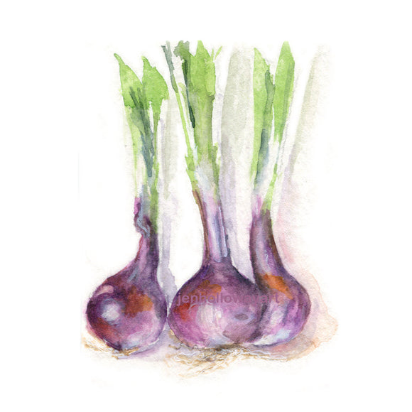 Watercolor Onions, Purple Onions Print, Vegetable Print, Onions Print, Kitchen Art