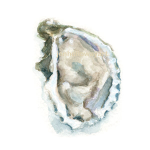 Watercolor Oyster, Oyster Print III, Oyster Art, Shell Art, Shell Print