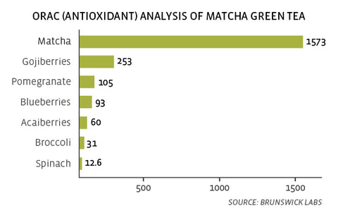 matcha antioxidants
