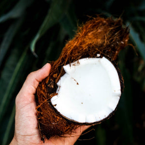 coconut mct oil all natural