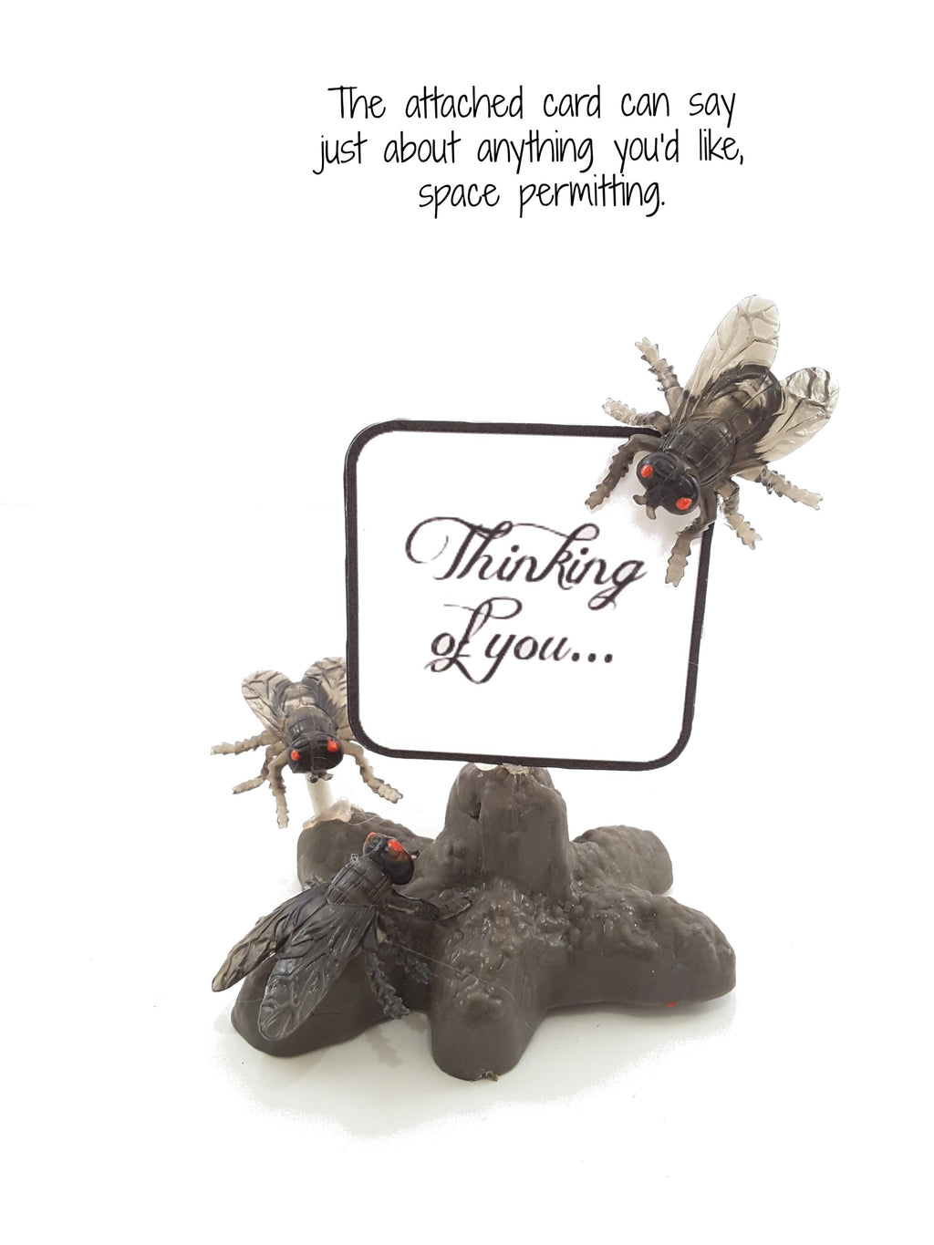 "A Pile of Poop with Flies ""Greeting Card"" Novelty gift - TheLastWordBish.com"