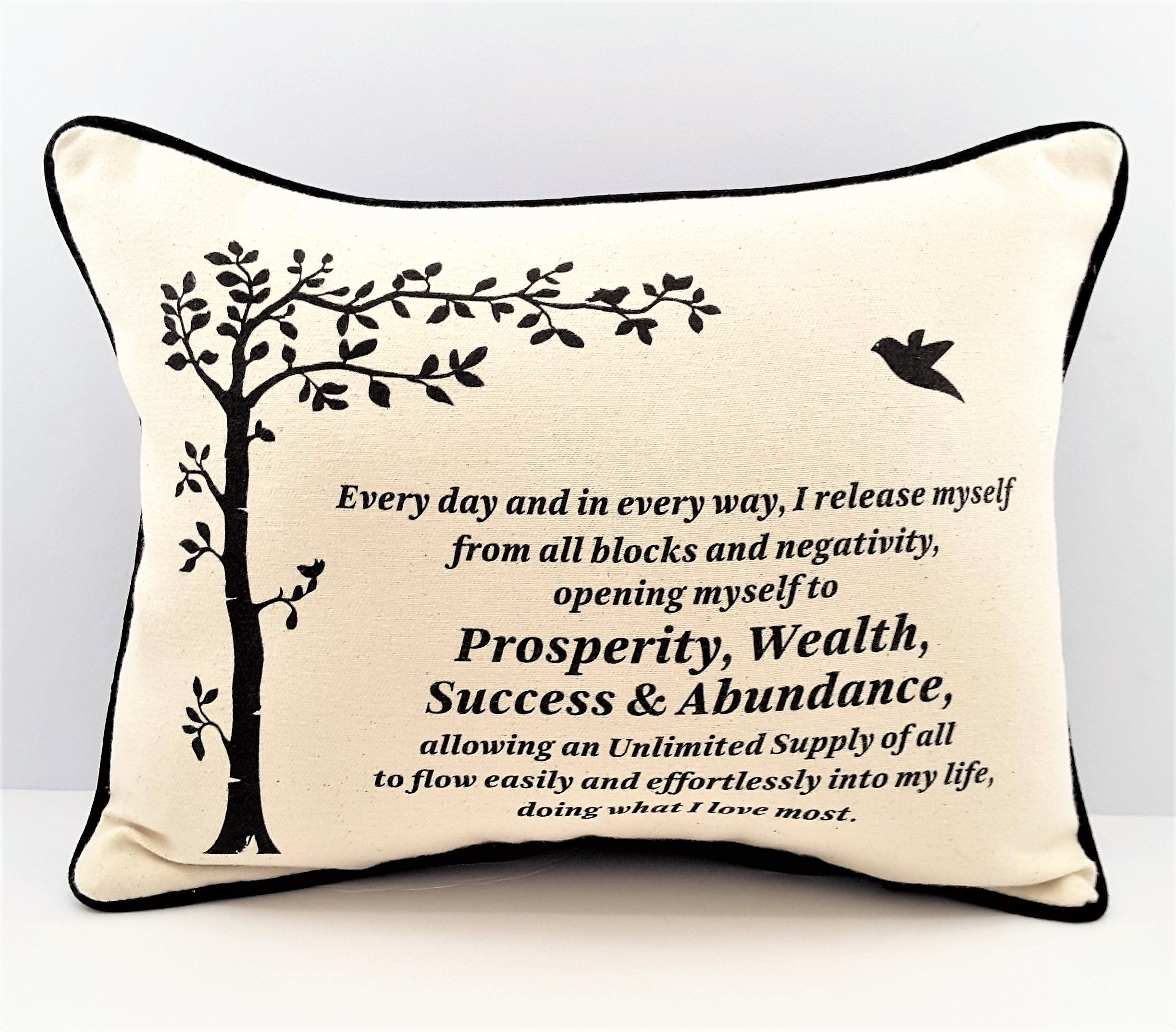Prosperity Affirmation Pillow Cover with pocket - TheLastWordBish.com