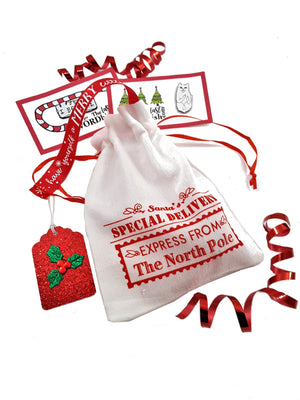 SANTA DRAWSTRING BAG WITH GOODIES