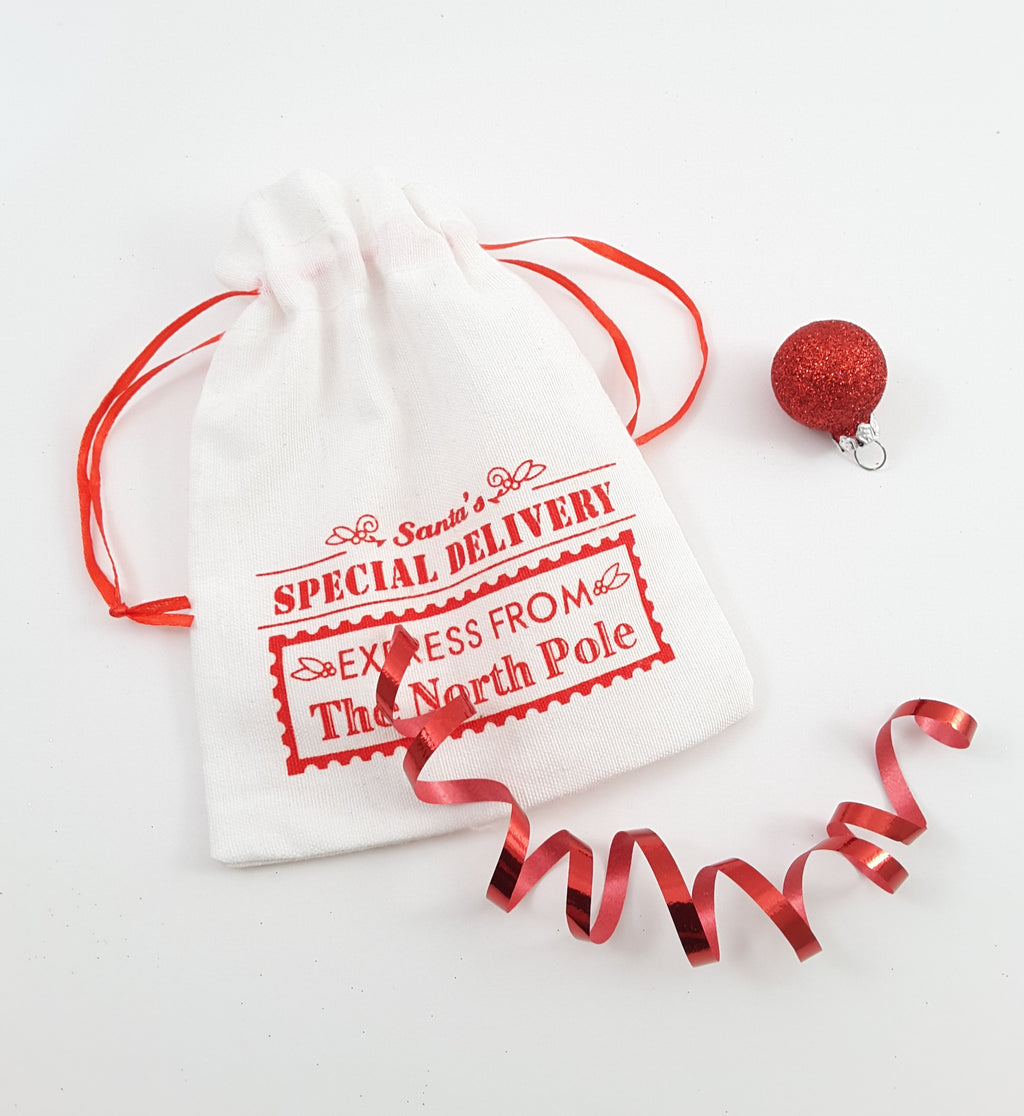 Santa's Special Delivery Drawstring Bag - for your enamel pins, keychains, buttons, etc. - TheLastWordBish.com