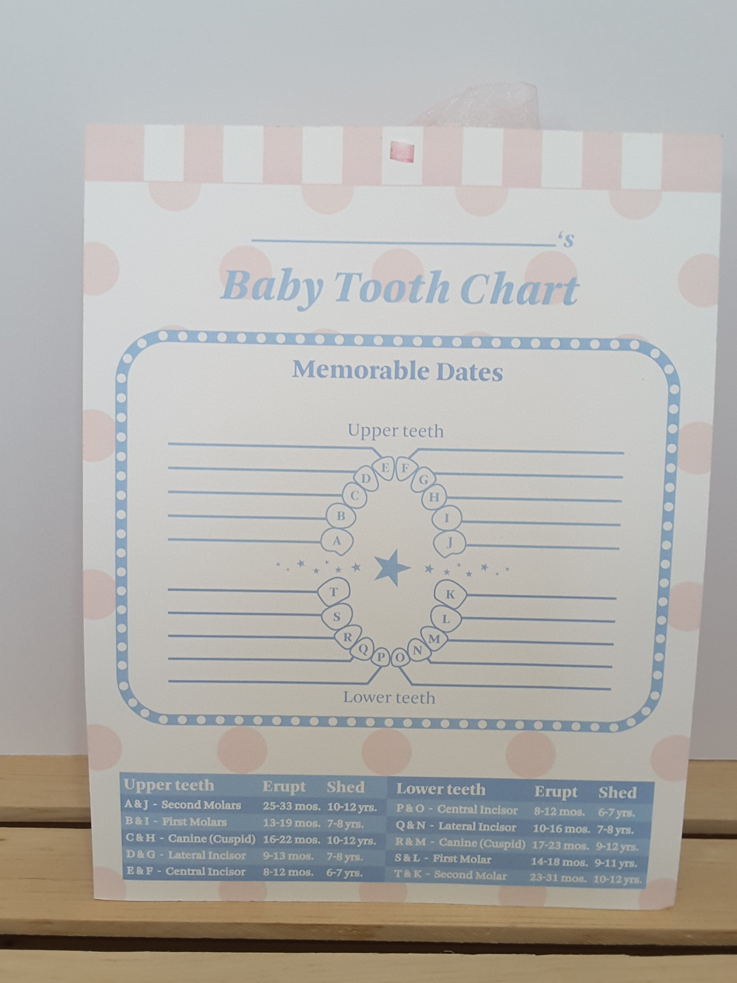 Baby Tooth Chart - TheLastWordBish.com