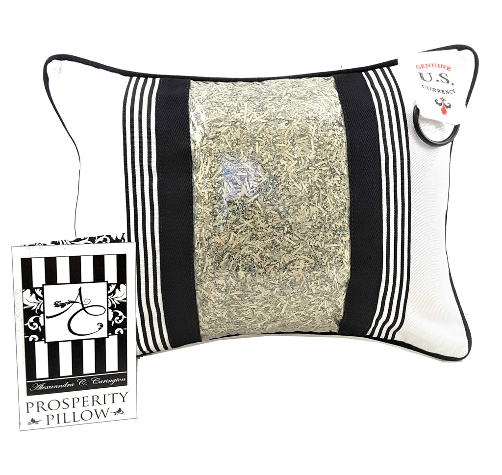 Prosperity Pillow with Genuine U.S. Currency