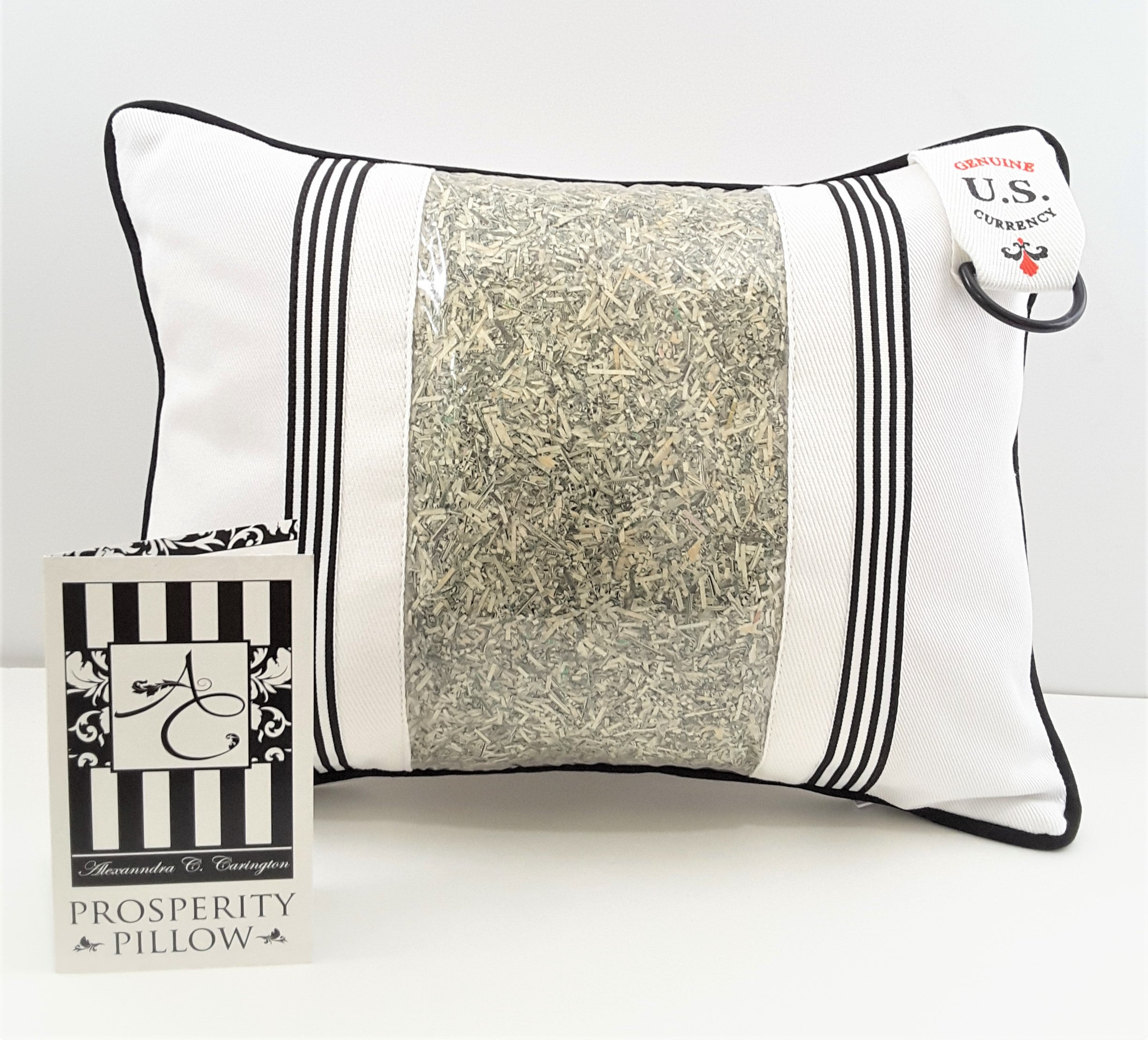white on white prosperity pillow with genuine U.S. currency