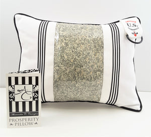 Prosperity Pillow with Genuine U.S. Currency - TheLastWordBish.com