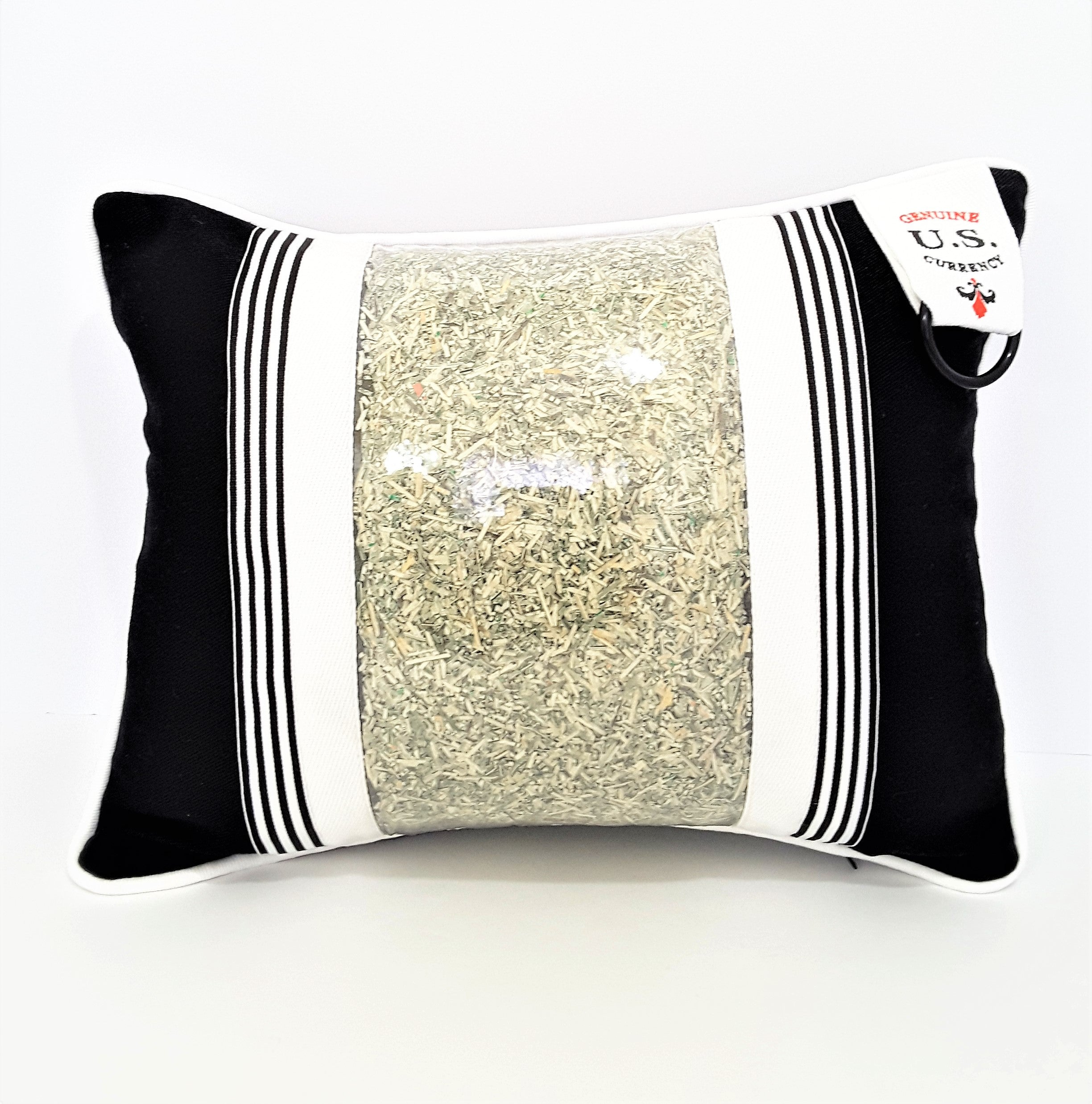 Prosperity Pillow with Genuine U.S. Currency - The Last Word Bish