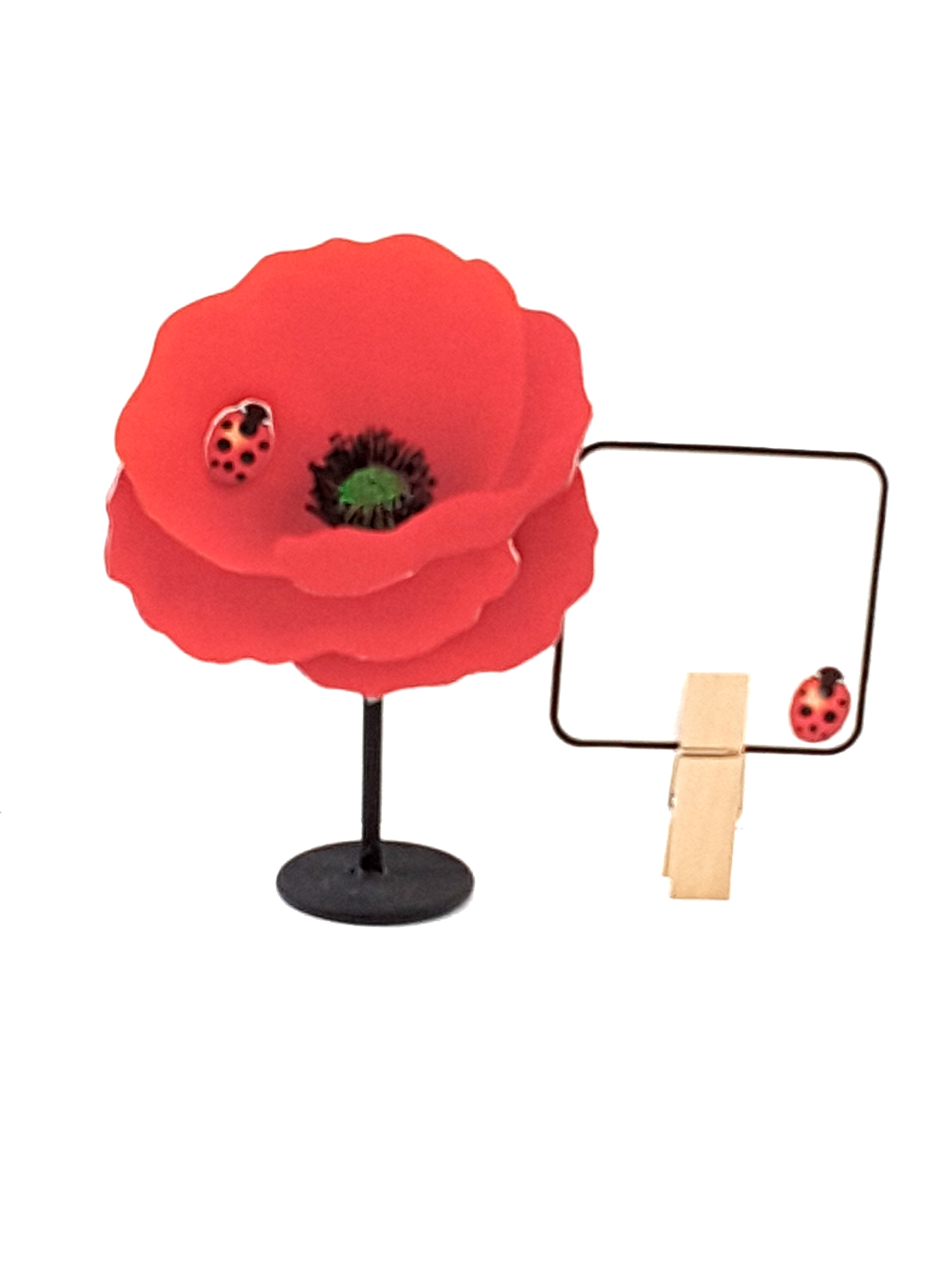 Personalized Red Poppy Stand-Up All-Occasion Greeting Card - The Last Word Bish