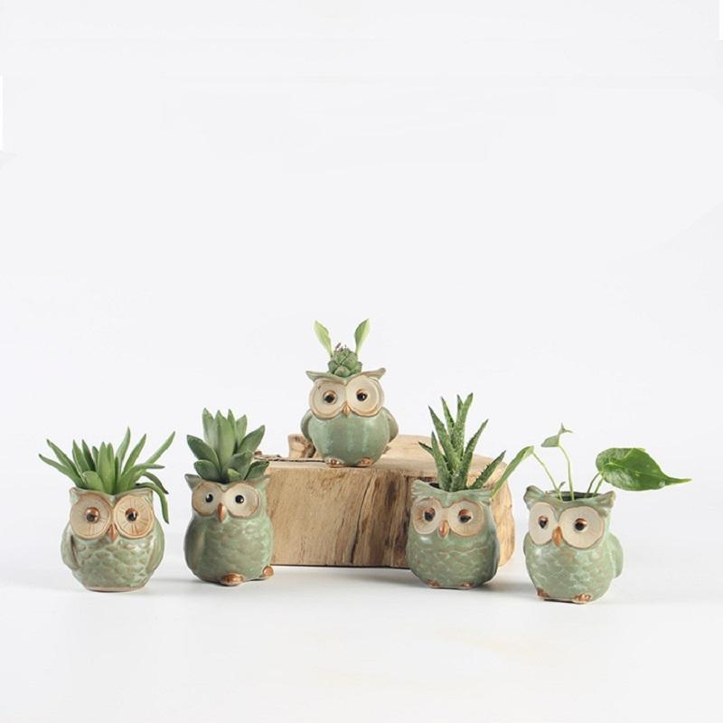 DealsChampion 5pcs Unique And Creative Ceramic Owl Flower Pots