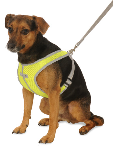 3101 Precision Fit Reflective Mesh Sport Harness. Small - Medium Size up to 50 LBS