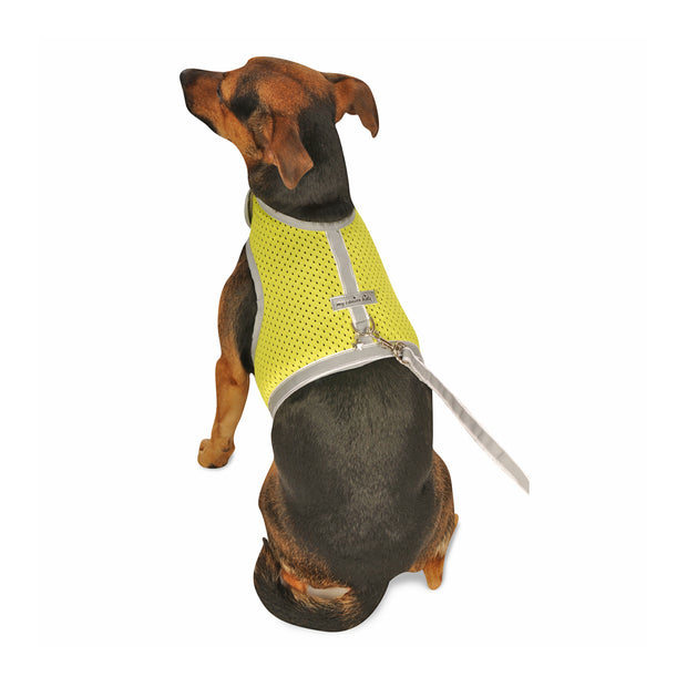 My Canine Kids | Cloak and Dawggie  Atheltic Mesh Dog Vest Harness Small Dogs, Tiny Teacup