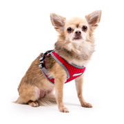 My Canine Kids | Cloak and Dawggie  Step Easy Reflective Mesh Dog Harness Vest Nylon Tiny dog Teacup