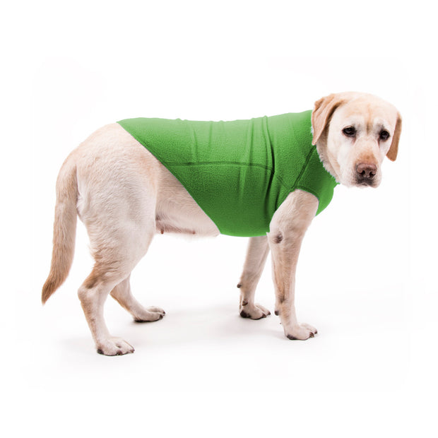 My Canine Kids | Cloak and Dawggie  Fleece Dog Sweater shown in green on Lab