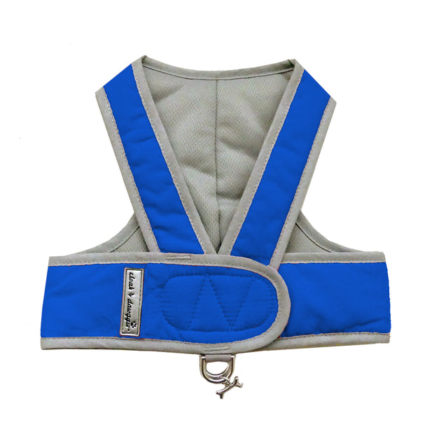 Step n Go Harness Blue