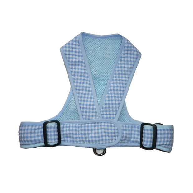 Blue gingham dog harness small dog xs my canine kids