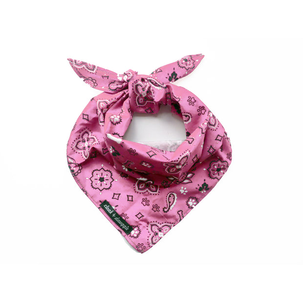 4904 Bandana Print Bandana For Dogs or People