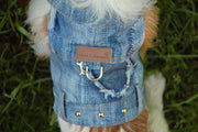 Dog wearing denim jacket 4850 Cloak and Dawggie