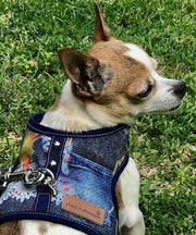 Dog wearing cloak and dawggie 4600 harness denim lace print
