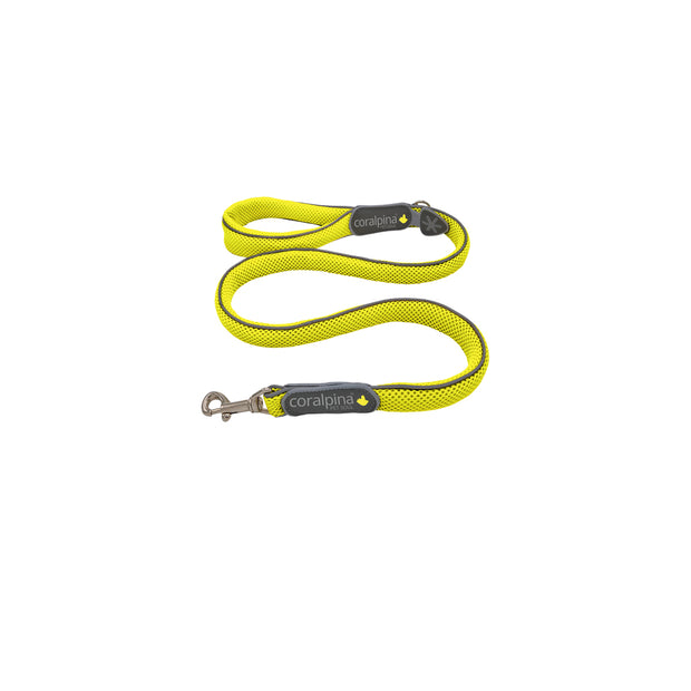 C100 Series Coralpina Reflective Mesh Lead