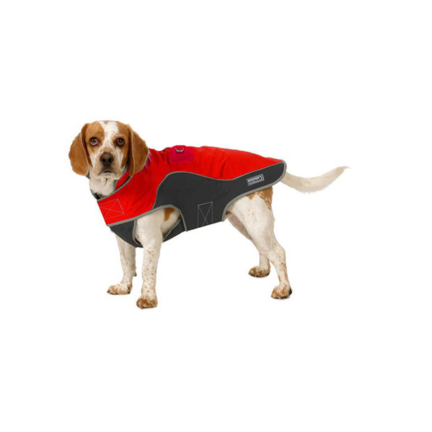 Precision Fit Polar Parka in Red and Black on Large Dog