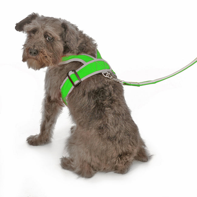 1101 Precision Fit Dog Harness - Nylon. Step-In. Teacup, Puppy - Medium Size Dogs up to 50 LBS