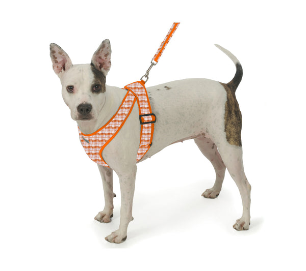4101 Precision Fit Gingham Harness for Small Dogs, Puppies and Teacups up to 50 LBS