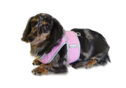 Step n Go Harness in Pink on doxie