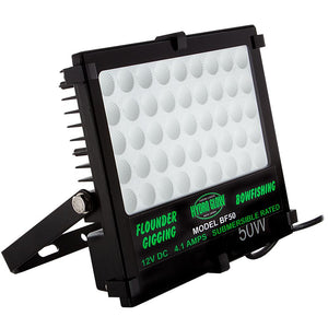 Hydro Glow 50W/12V Led Flood Light - Warm White