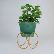 Load image into Gallery viewer, Orbital Plant Stand