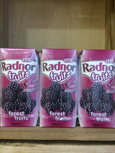 Radnor Fruits Forest Fruits Case 24 x 200ml Drink