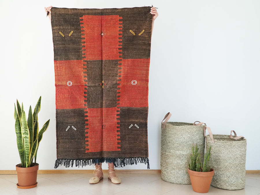 Brown and Red Moroccan Cactus Silk Sabra Rug